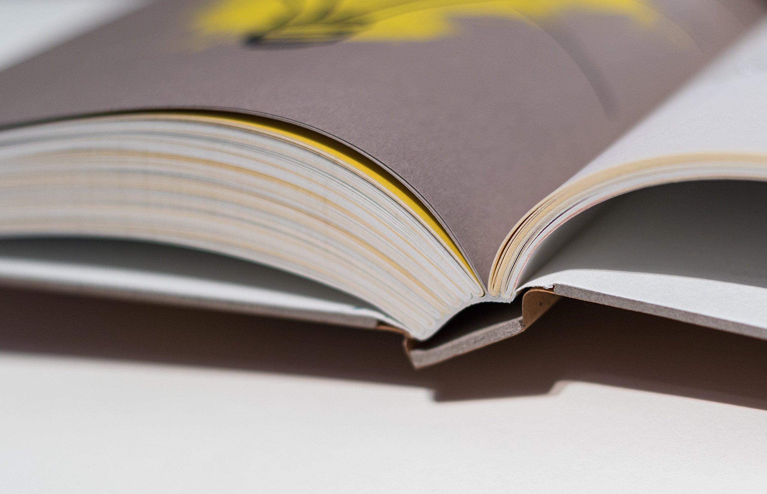 Buch fuer Ideensucher